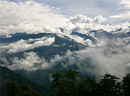 aussicht bamboo retreat monsun sikkim indien