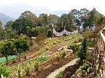 Garden Bamboo Retreat Rumtek Sikkim, India