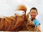 Mongolian Boy Horse Gobi Mongolia