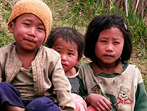 kinder land darjeeling distrikt indien