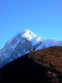 koktang berg trekking sikkim indien