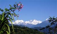 landschaft aussicht flora berge kanschendzonga sikkim west indien
