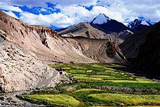 landschaft kontrast felder berge ladakh indien