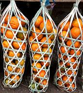 mandarinen nagaland indien