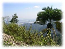 rad reise mtb kalimpong flachland himalaya indien
