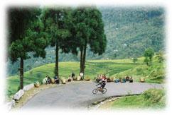 rad tour temi teegarten sikkim indien