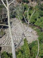 terrassierte felder landschaft arunachal pradesh indien
