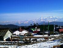 trekking singelela grat grenze indien nepal